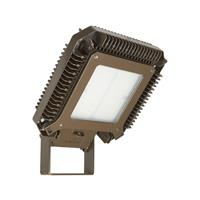 Appleton™ Industrial Areamaster™ Generation 2 LED Luminaire