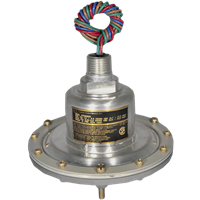 675GE Series Pressure Switch
