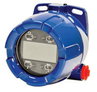 DataKeep 300500 Explosion-Proof Level Indicator