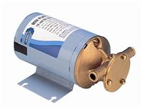 8860 0001 Series Bronze DC Pump