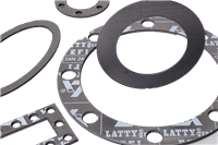 LATTYgraf EFI Expanded Graphite and Stainless Steel Sheet and Gasket for Static Seal Application