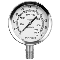 100 mm Severe Service Gauges