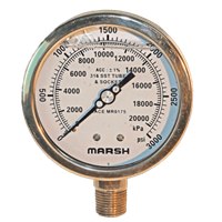 NACE MR0175 Compliant Stainless Steel Gauges