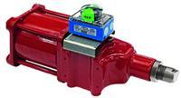 Rotork CP Range - Compact Pneumatic Actuator